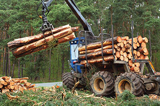 CENTRI Forestry fleet solutions